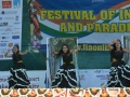 2014-india-independence-day-celebrations-fia-day2-036