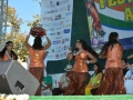 2014-india-independence-day-celebrations-fia-day3-012