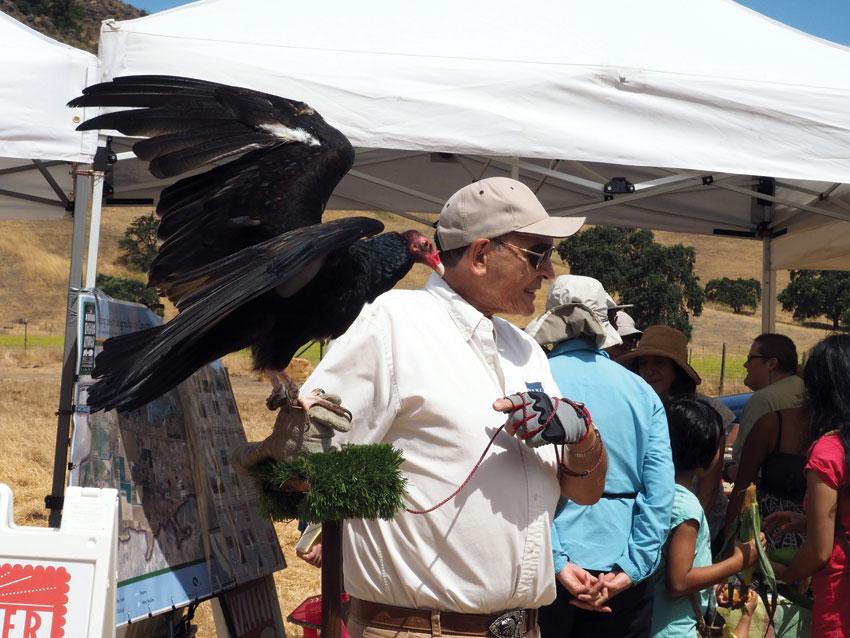 WERC Zorro. (Santa Clara Open Space Authority)
